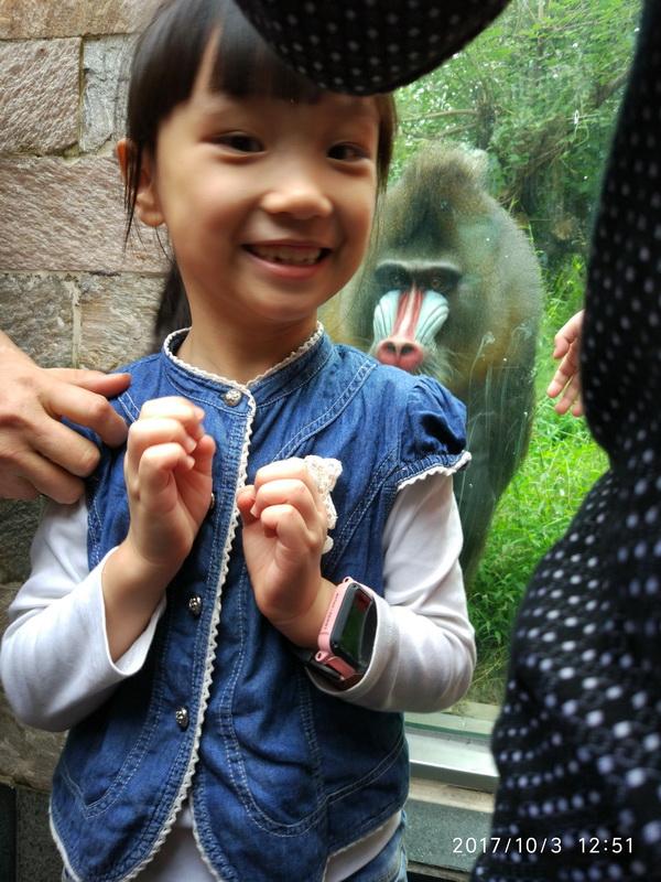 日记一则-游览成都动物园